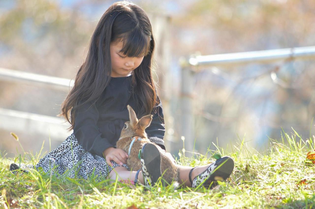 草原のなか女の子とうさぎが向き合っている写真